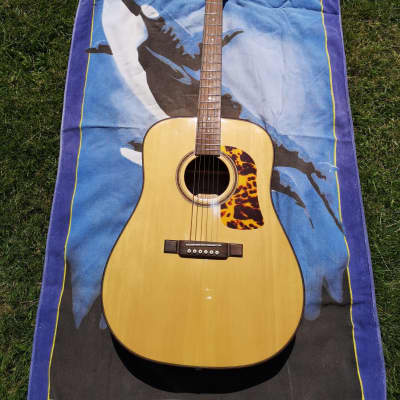 Washburn D12-S Rarewood for sale