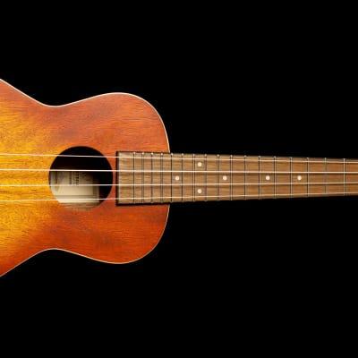 Ortega Concert Ukulele Earth Series for sale