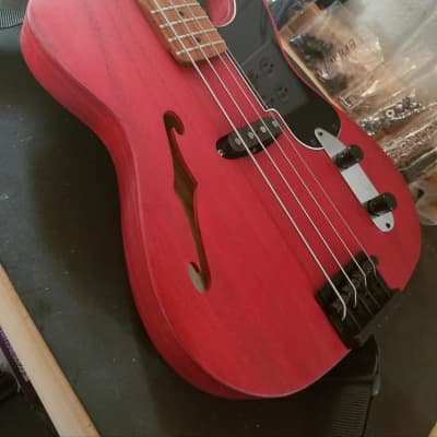 TW Basses TB Player Semi-Hollow bass - customized by you! for sale