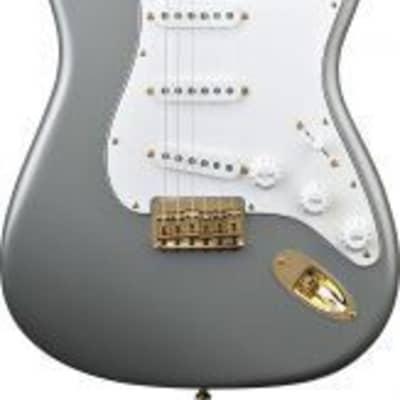 Fender Custom Shop Robert Cray Signature Stratocaster - Rosewood Fingerboard - Inca Silver 0109100824 for sale