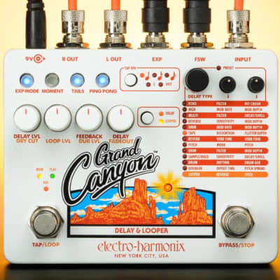 Electro-Harmonix Grand Canyon Delay and Looper Pedal for sale