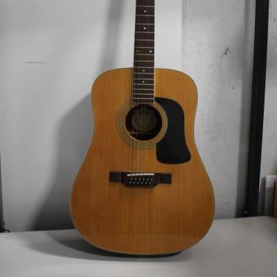 Washburn D12S12 12-String Acoustic Guitar for sale