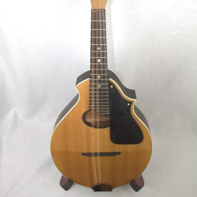 Stromberg-Voisinet Mandolin 1920's Natural for sale