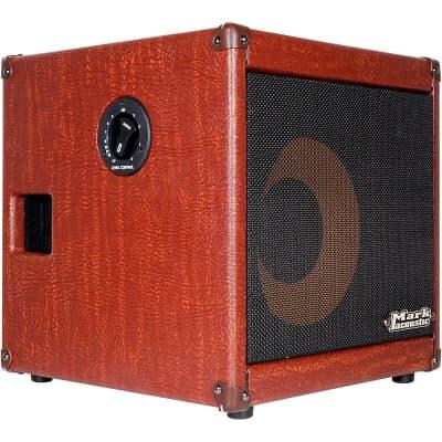DV Mark AC 101H 150W 1x10 Acoustic Combo Amp Regular