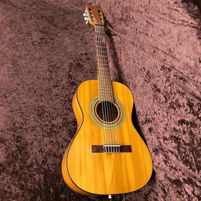 Gibson C-1S Classic