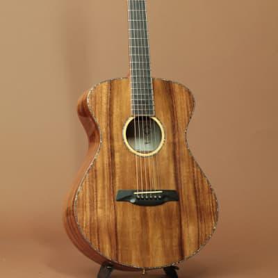 Maestro Guitars Vera KO K for sale