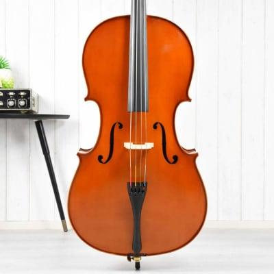 Cello Main 4/4 Mediate