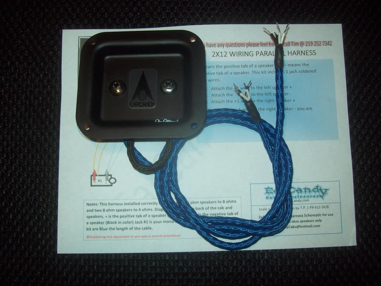 EarCandy 2x10 2x12 guitar speaker High Definition Wiring | Reverb