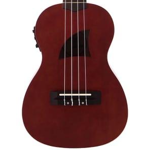 Eddy Finn EF-1-CE Concert  Acoustic-Electric Ukulele w/Built In Tuner for sale