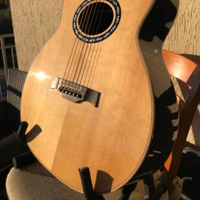 Acoustic Electric Guitars Musical Instruments & Gear Vintage Gemini Vge800n Paul Brett Signature Baritone Electro Acoustic Guitar Street Price