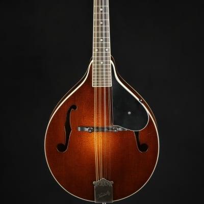 Kentucky KM-250S for sale