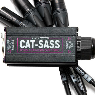 Elite Core CAT-SASS Special Application Snake System - (4) 5 Pin Male DMX/AES