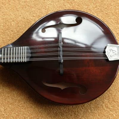 Weber Gallatin Mandolin 2014 in Weber case. Adirondack top, Maple back sides and neck. for sale