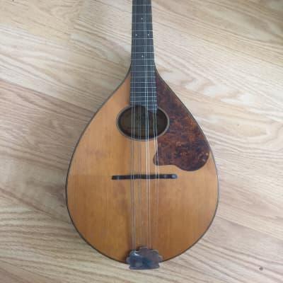 Vintage Regal Mandolin  1920's ? Brown for sale
