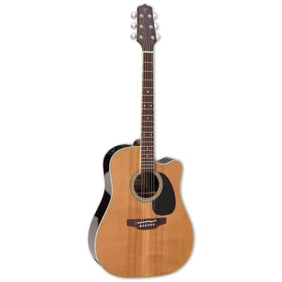 Takamine EF360SC TT Thermal Top Dreadnought with Electronics Natural