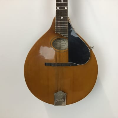Kentucky KM-272 Mandolin for sale