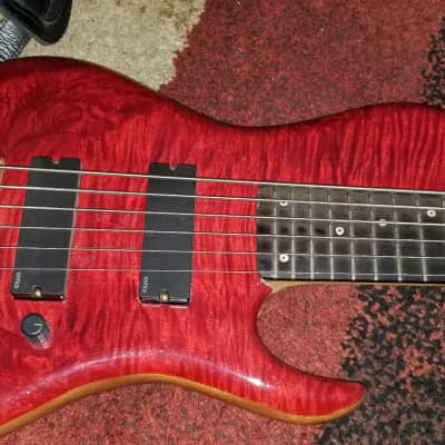 Dale Roberts Custom 6 String Bass Red Burl   Dale Roberts for sale