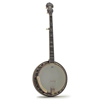 Ozark 5 String Banjo Bronze Engraved and Padded Cover for sale