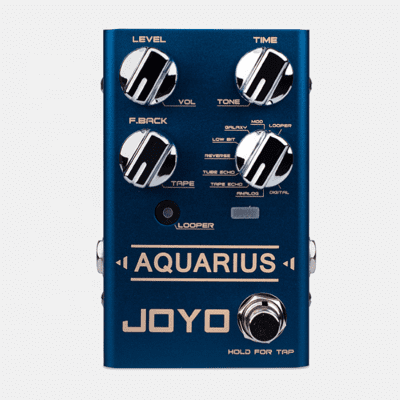 Joyo R-Series R-07 Aquarius