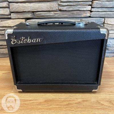 Esteban G10 Guitar Amplifier (Very Good) *Free Shipping* for sale