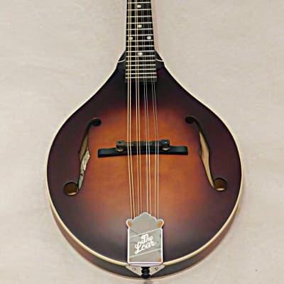 The Loar LM-110 Honey Creek A-Style Mandolin