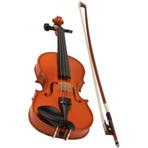 eMedia EV05164 My Violin Starter Pack - 3/4 Size