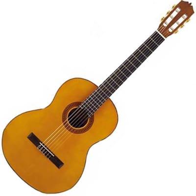 Guitare Classique Martinez Mcg 20 C Etude Standard Serie for sale