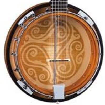 Luna Banjo 6 String Celtic for sale