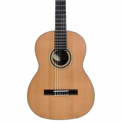 VGS Pro Andalus Model 10MA - Konzertgitarre for sale