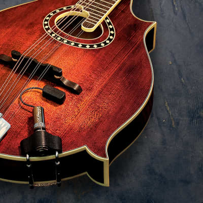 L.R. Baggs Radius Mandolin Pickup