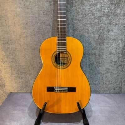 Rare Vintage Penco-Morris M-50 Classical Guitar for sale