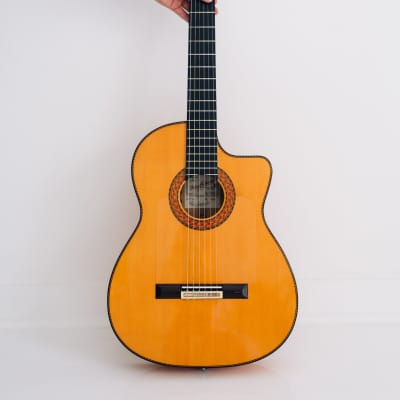 Pedro Maldonado  F1 Cutaway flamenco guitar for sale