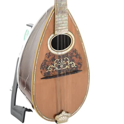 Washburn Style 175 Bowl Back (c.1897) for sale