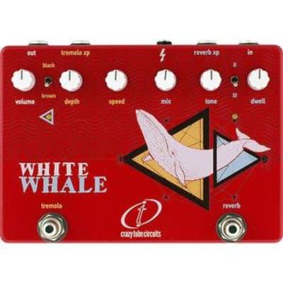 Crazy Tube Circuits White Whale