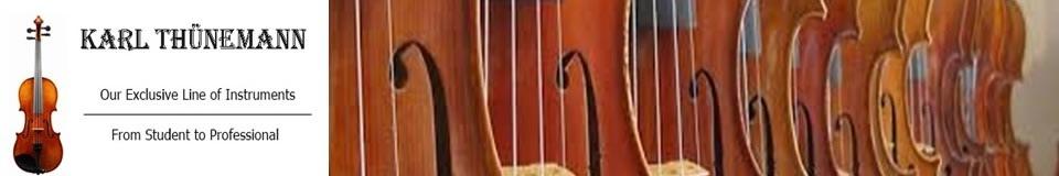 Cassandra Strings, Inc.