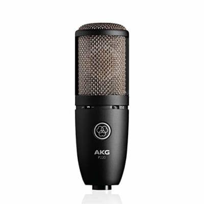 AKG P220 Large Diaphragm Cardioid Condenser Microphone