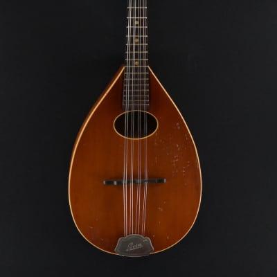 Levin Mandoline 54 Taranto for sale