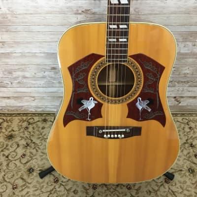 Used Ensenada WG65 Acoustic Guitar for sale