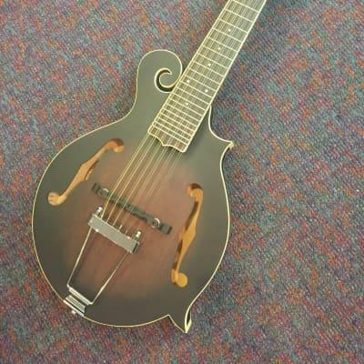 Gold Tone Mando Guitar Model F-12 Plays like Guitar-New with Case and Shop Setup!