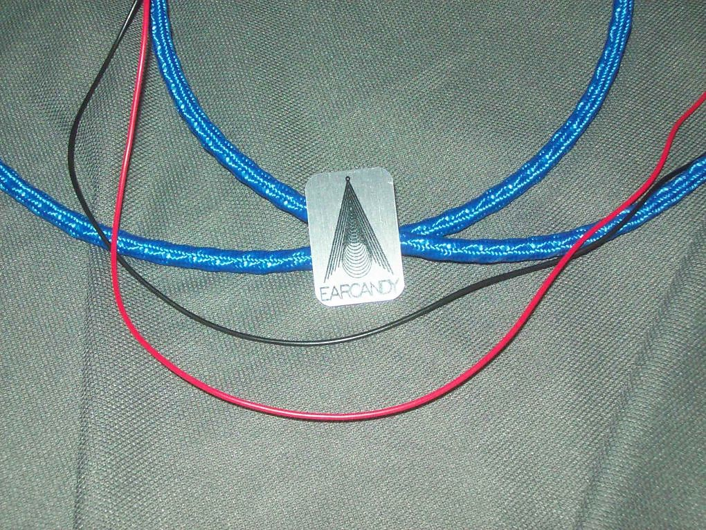 Fine Earcandy 2X10 2X12 Guitar Speaker High Definition Wiring Harness W Wiring Cloud Hisonuggs Outletorg