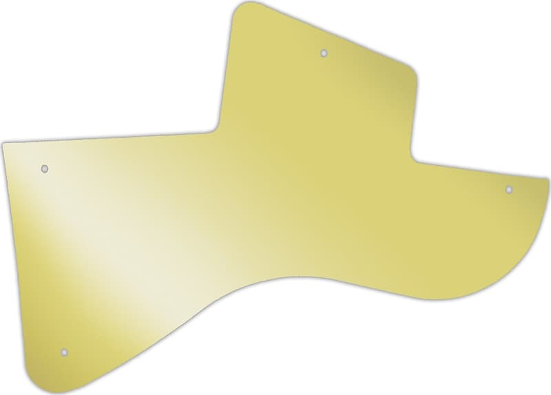 WD Custom Pickguard For Gibson Les Paul Special
