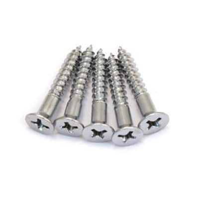Bridge Mounting Screws