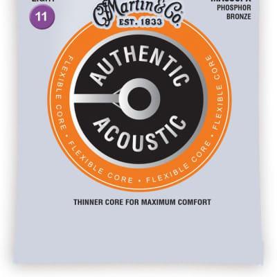Martin MA535FX Authentic Acoustic Flexible Core Custom Lights