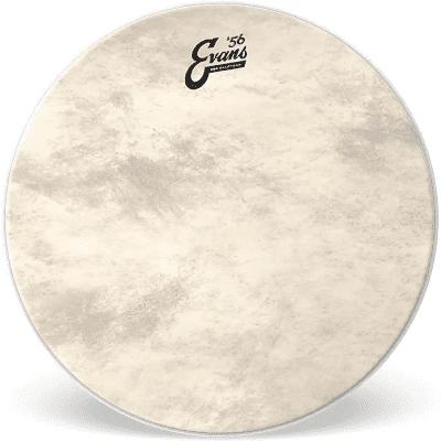"""Evans BD18GB4CT EQ4 Calftone Bass Drum Head - 18"""""""