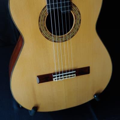 1989 Sobrino de Santos Hernandez Brazilian Rosewood Classical Guitar for sale