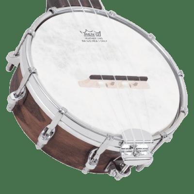 Recording King RK-U25 Madison Banjo Ukulele 2020s Brown Satin