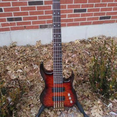 Bunker 5-string bass w/Fender hardshell case for sale
