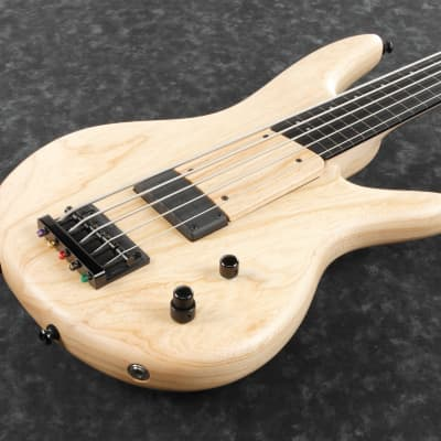 Ibanez GWB1005-NTF Gary Willis Signature E-Bass Made in Japan 5 String Fretless Natural Flat for sale