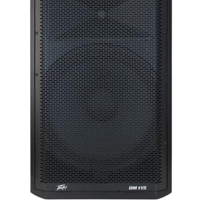 Peavey Dark Matter DM115 Powered Loudspeaker