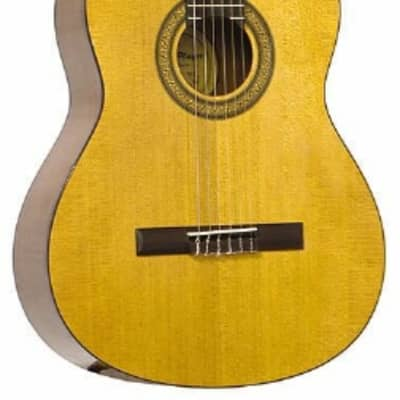 JB Player JB10C Nylon-String Classical Acoustic Guitar - Natural Finish for sale